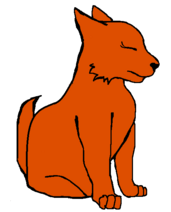 Волчонок жен Мхайри