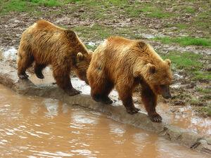 OKC Zoo May 2007 - 28.jpg