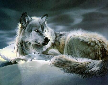 Файл:Wolf1.jpg