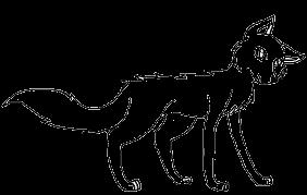 FMwolf2
