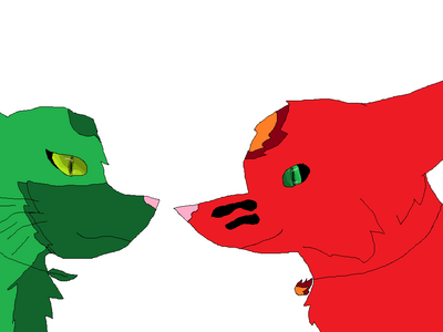 Firelightning the wolf and Leafstorm the fox