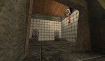 Mirror Image - Asylum room