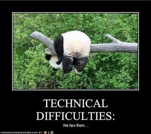 Funny-pictures-panda-has-technical-difficulties1