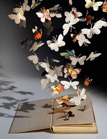 File:Butterfly book.JPG