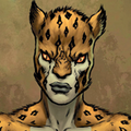 Box-cheetah