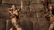 Revisiting the Amazons 21