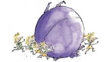 Violet Illustration 1