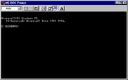 Windows95b msdos