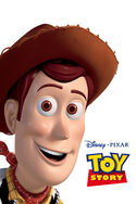 Toystory 2015
