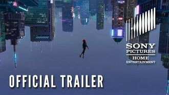 SPIDER-MAN INTO THE SPIDER-VERSE Now on Digital & on Blu-ray March 19!