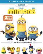 Minions (Blu-ray/DVD)
