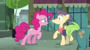 Pinkie Pie talking to Pouch Pony S6E4