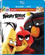 The Angry Birds Movie (Blu-ray/DVD)