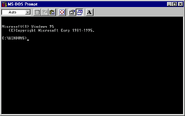 Windows95 msdos