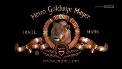 Metro-Goldwyn-Mayer (2001)