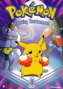 Pokemon vol10