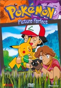 Pokemon vol17
