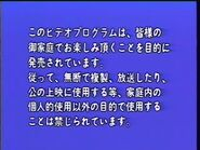Japanese Warning Screen (1992)