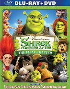 Shrek Forever After (DVD/Blu-ray)
