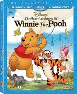 The Many Adventures of Winnie the Pooh (2013 Special Edition)