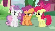 The CMC disappointed S6E3