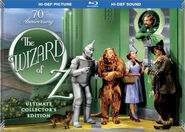 The Wizard of Oz 2009 Blu-ray (Collector's Edition)