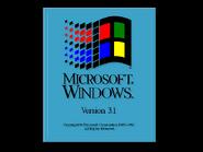 Windows31