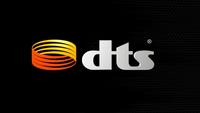 DTS (2013)