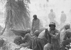 M1 Pack Howitzer Tarawa