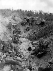 Marines on Orange Beach, Peleliu 1944