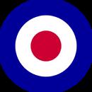 RAF Insignia
