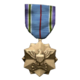 WiC Medal Campaign Secondary 11