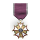WiC Medal Campaign Secondary 07
