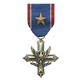 WiC Medal Campaign Secondary 10