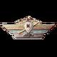 SA Medal M18 Primary
