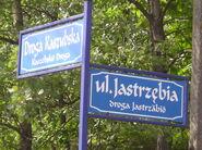 Ostrzyce-nazwa ulicy