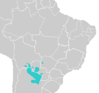 Mataco-Guaicuru Languages