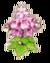 Saria flower