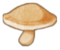 Rogh mushroom