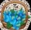 Papillias Flower