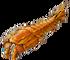 Flat crustacean