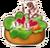Smelly salad