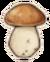 Pol mushroom