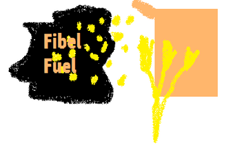 Fibel Fuel 2010