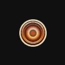 Wheel icon b1