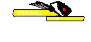 Sidewall Shine 2010