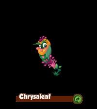 200px-Chrysaleaf