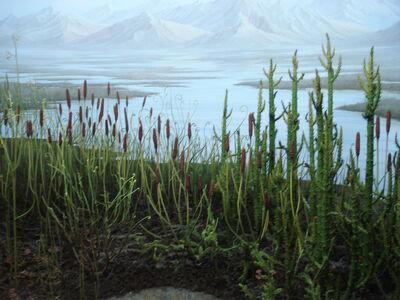 Silurian flora