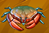 Collection-Crab
