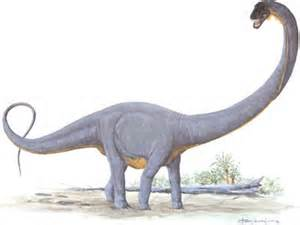 File:Supersaurus.jpg